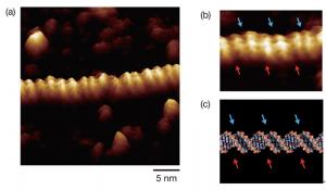 京大,DNA二重らせんおよびその微細構造の直接イメージングに成功