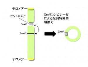 130508okayama1