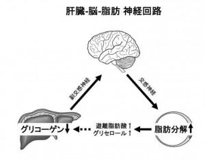130820tsukuba1