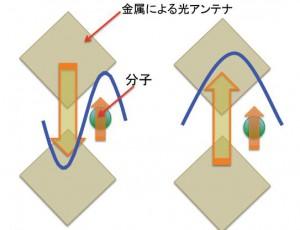 大阪府立大学,微弱な光の波長を高効率に変換できる新原理を解明