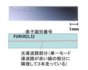 合波器の拡大図