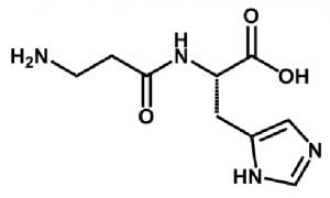 イミダゾールジペプチドを構成するカルノシン(βアラニル-ヒスチジン)の化学構造式