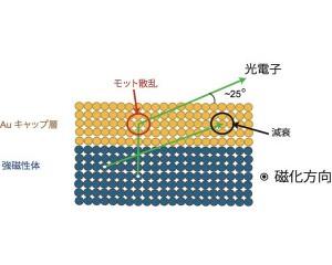 NIMSら,埋もれた強磁性層からのスピン分解電子状態の検出に成功