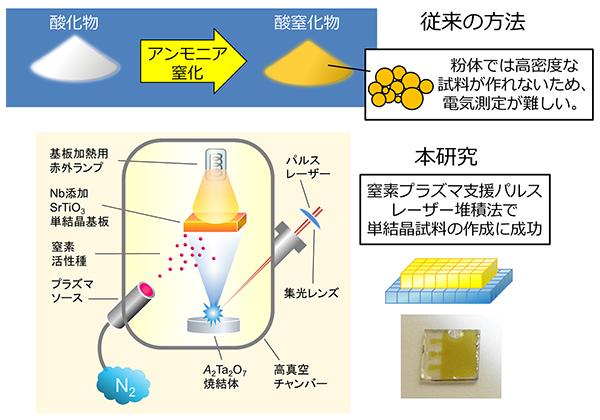 東大,酸窒化物「SrTaO2N」で初めて強誘電体的な挙動を観察