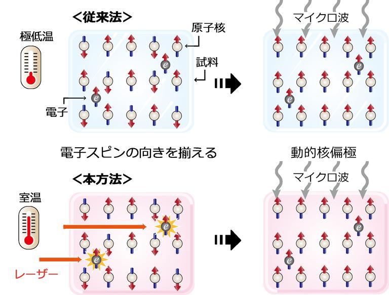 阪大,室温でNMR信号を1万倍以上に増大させることに成功