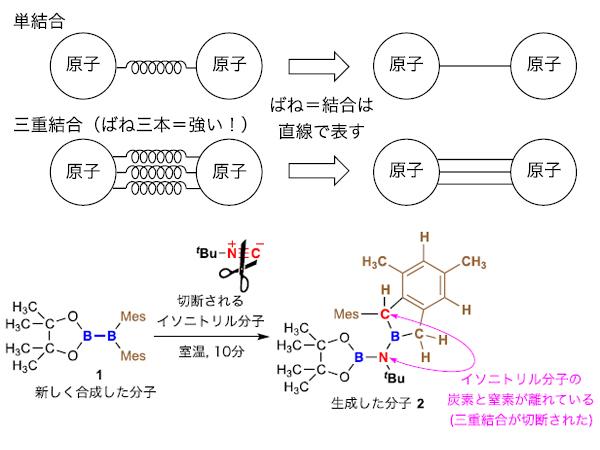 中大ら,穏和な条件で炭素・窒素三重結合を切断する化合物を発見