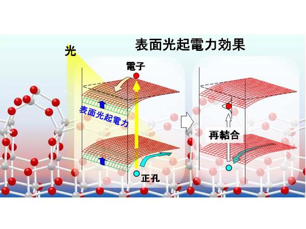 東大ら,二酸化チタンの光触媒活性を決める因子を発見