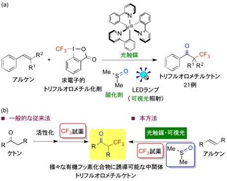 東工大,光触媒を用いて有機フッ素医農薬中間体の簡便な合成に成功
