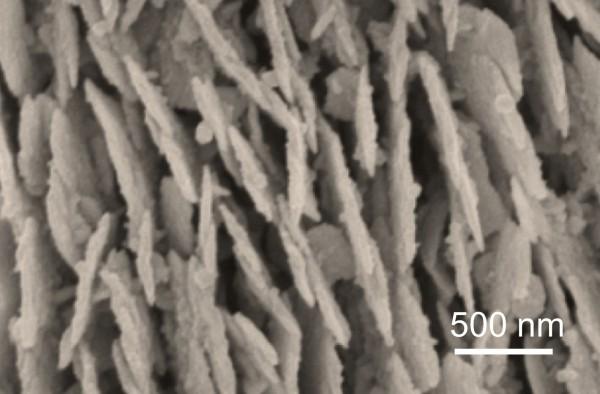 北大など,フェムト秒レーザによる精密な銀ナノプレート構造の作製に成功