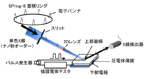 NIMSら, 一般的な圧電体(チタン酸ジルコン酸鉛)の圧電基礎特性の測定に成功