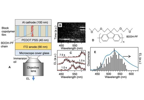 東工大,高分子1本鎖からの電界発光の観測に成功