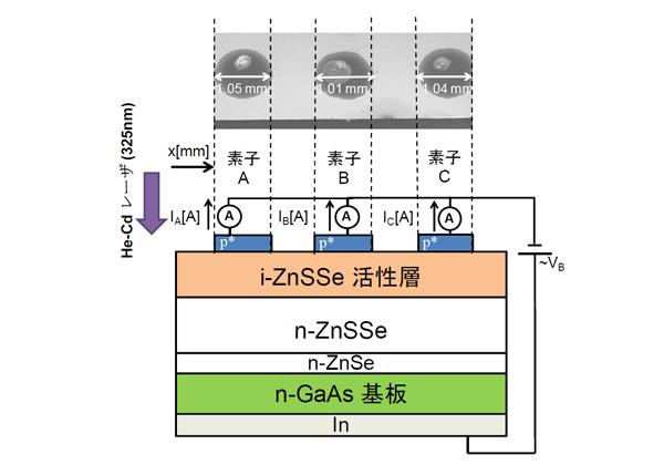 鳥取大,有機-無機ハイブリッド型紫外線高感度光検出器の開発に成功