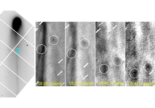 国立天文台ら,ラヴジョイ彗星の尾の素早い変化を観測