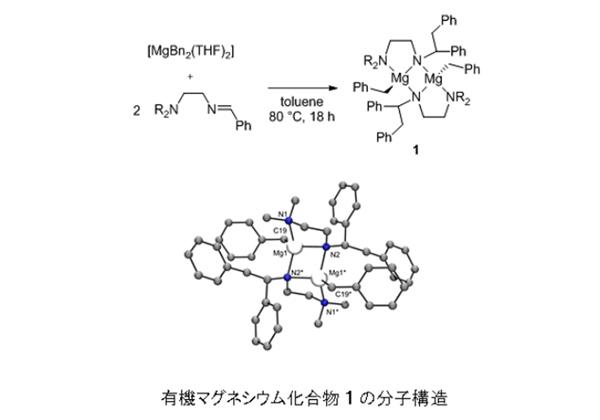 阪大,有機マグネシウム化合物の新触媒機能を解明