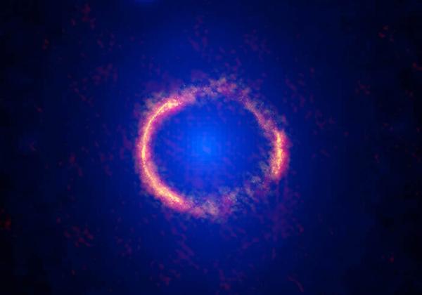 アルマ望遠鏡,完璧なアインシュタインリングを観測