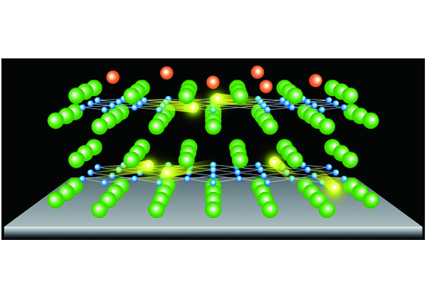 東北大,原子層超薄膜で高温超伝導を発現・制御