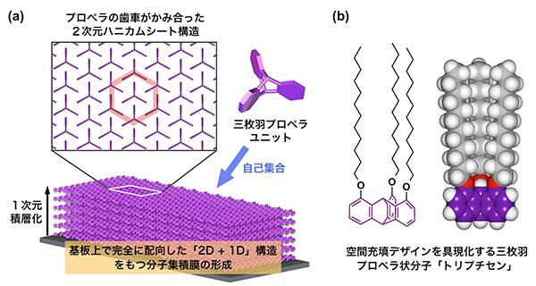 東工大ら,ドメインの無い大面積有機薄膜を形成