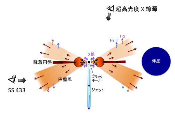 京大ら,謎の天体のブラックホールが大量にガスを飲み込むことを発見