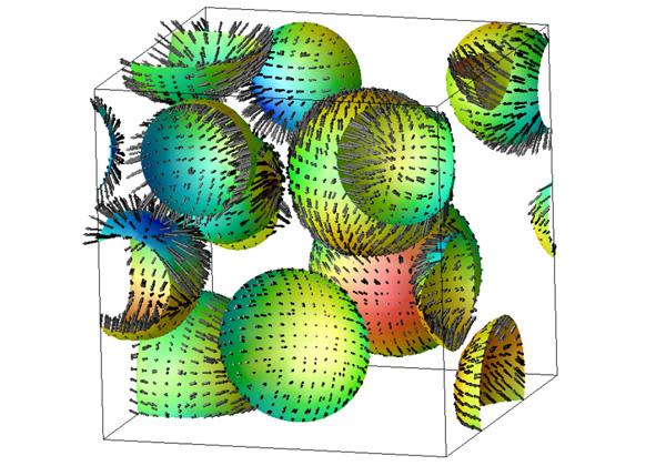 東大,ドロップレット型相分離の新たなメカニズムを発見