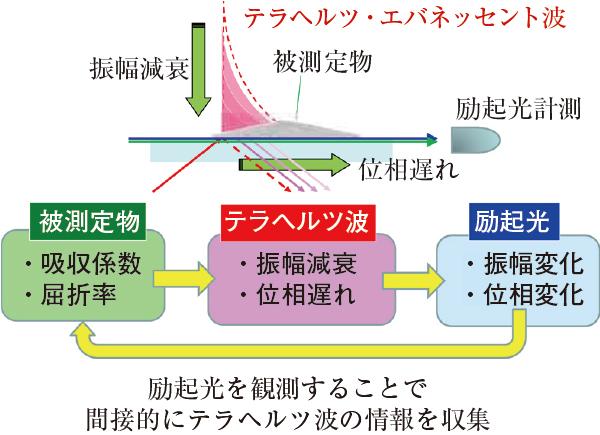 エバネッセント波を利用 出典:JST