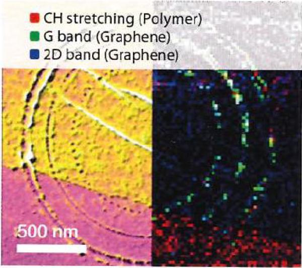 図1 CVD成長グラフェン(金基板)中に刻印された円形パターンのAFM, TERSイメージの比較(堀場のカタログより)