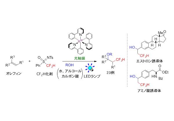 東工大,光触媒でジフルオロメチル基を分子骨格に導入