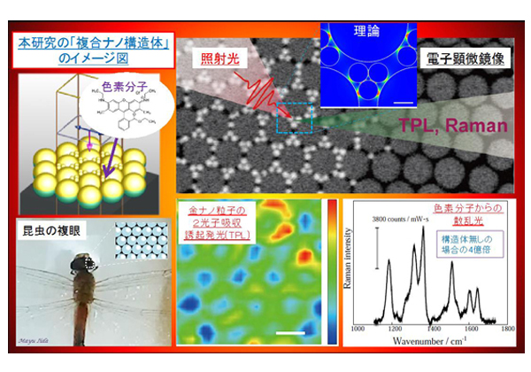 早大ら,2段階で複合ナノ構造を作成し光応答を増強