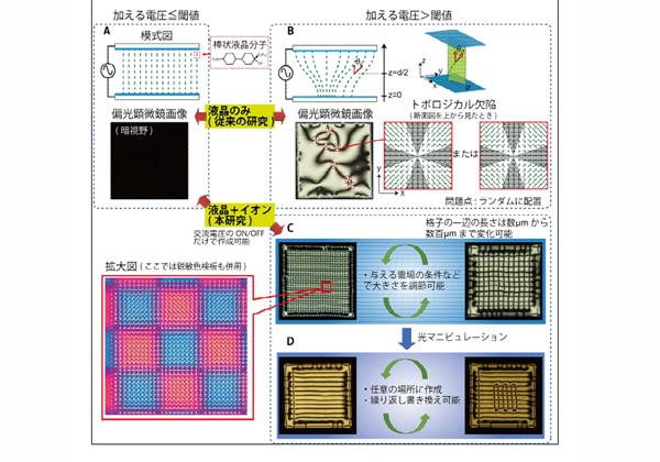 北大ら,液晶で書換え可能な高密度光渦発生アレイを作成