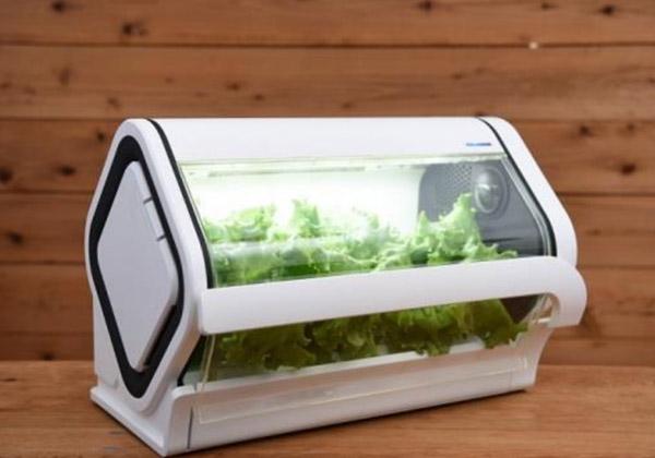 沖縄セルラー電話,IoT家庭用LED水耕栽培キットを発売