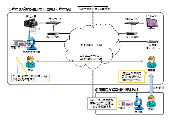 NTTデータら,8K遠隔医療の効果を検証