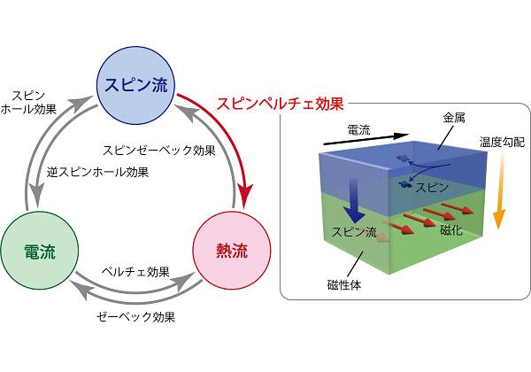 東北大,スピン流が生成する温度変化を可視化
