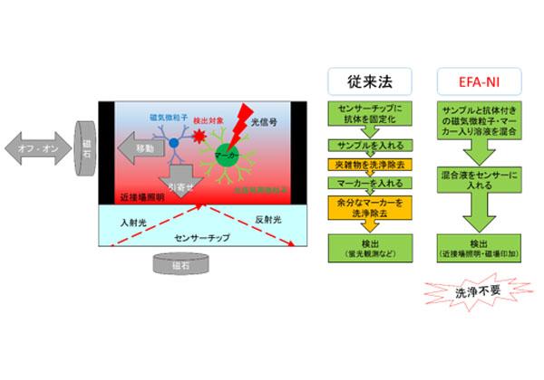 産総研,夾雑物中のウイルスを光で検出する技術を開発