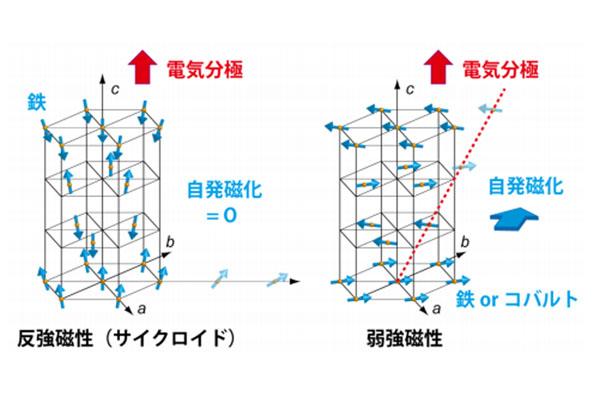 東工大ら,室温で強磁性・強誘電性が共存した物質を実現