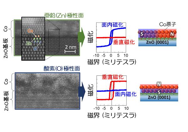 東北大,酸化物の異符号極性面上の磁石の特性を解明