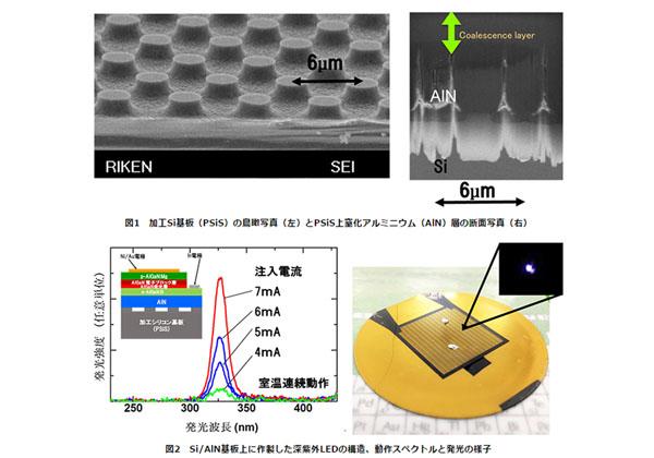 理研,Si基板上にAlN高品質結晶を製膜