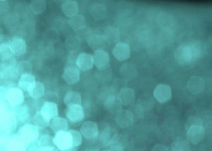 力学特性のマイクロ断層可視化(多機能OCT)