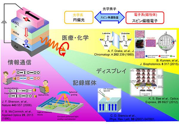 東工大,室温発光する円偏光スピンLEDを開発
