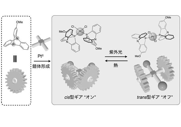 東大,光と熱で制御するギア分子を開発