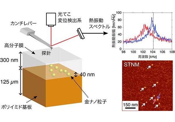 京大ら,熱雑音の光測定で埋もれたナノ粒子を検出