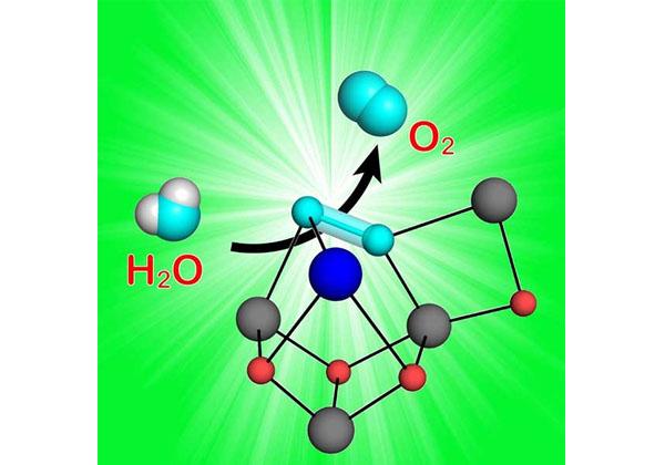 京大ら,光合成の水分解反応の核心に迫る