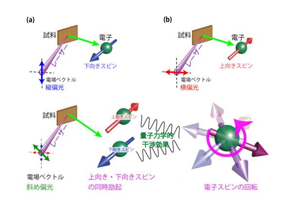 東大,レーザーの偏光制御でスピンを自由に操作