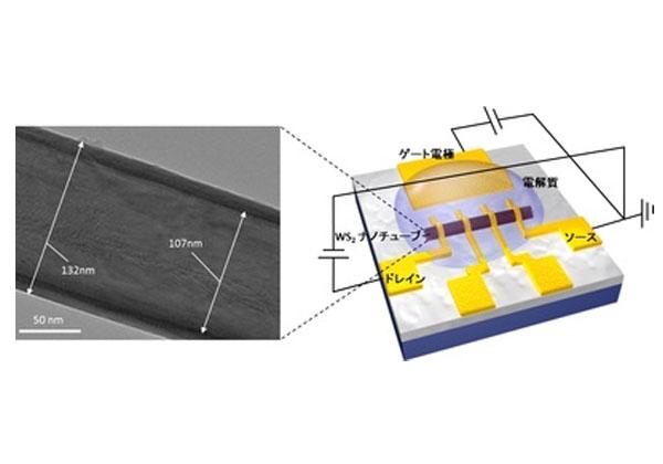 東大ら,単一超伝導ナノチューブの電気伝導性を制御