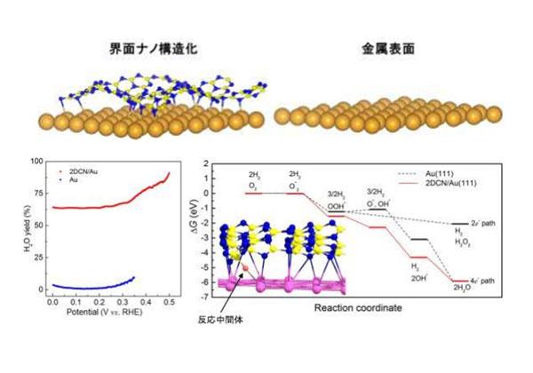 NIMSら,金触媒を不活性な条件下で活性化に成功
