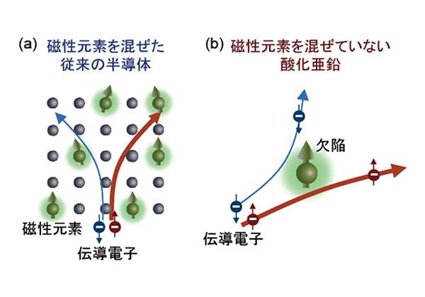 理研ら,酸化亜鉛が磁性伝導電子を持つことを発見