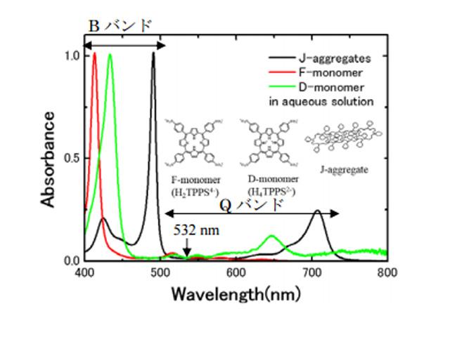 理科大ら,平衡状態で存在しない分子会合体を光で生成