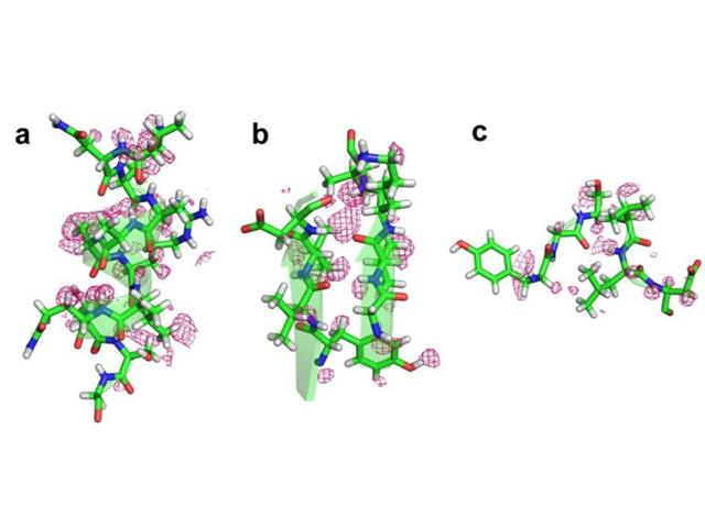 京大ら, XFELで常温での原子分解能構造解析に成功