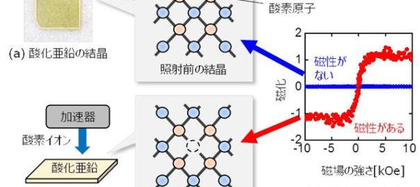 量研,放射線で酸化亜鉛に強磁性が現れる現象を解明