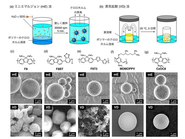 筑波大,共役ポリマーのマイクロ球体からレーザー発振