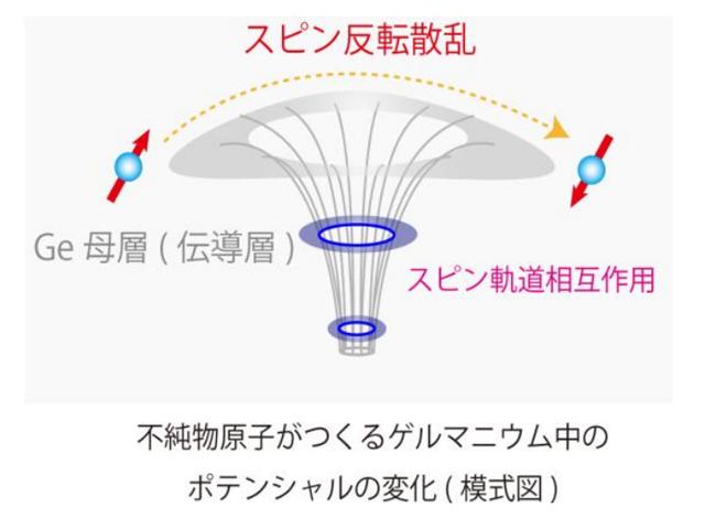 阪大ら,ゲルマニウム中のスピン散乱の詳細を解明