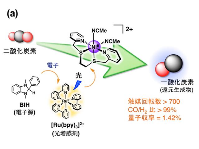 筑波大ら,酵素を模倣した人工光合成に成功